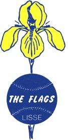 Honk- en Softbalvereniging The Flags